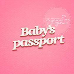 Baby's passport