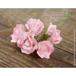 "Роза ""Зефирка"" бутон розово-белый 5 шт"