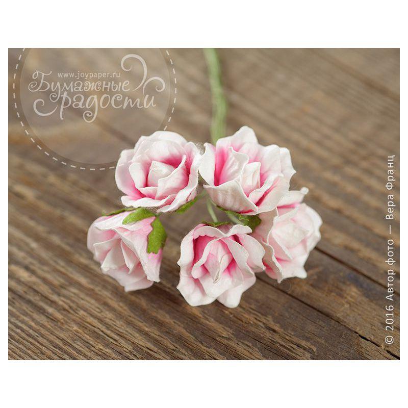 Бутон розы бело-розовой 5 шт
