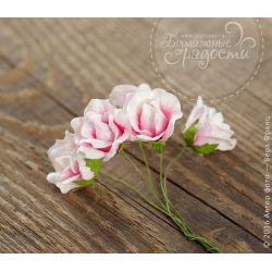 "Роза ""Зефирка"" бутон бело-розовый 5 шт"