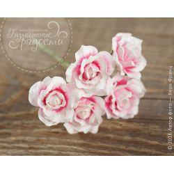 Полураспустившийся бутон розы бело-розовой 5 шт