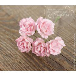"Роза ""Зефирка"" полураспустившаяся розово-белая 5 шт"