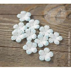 Лепесточки маленькие бело-голубые 10 шт