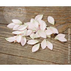 Листочки розы маленькие розово-зеленые10 шт