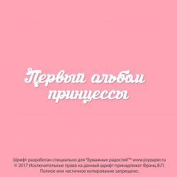 Чипборд. Первый альбом принцессы
